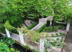 Conferenza a Salerno sul verde terapeutico. Aperte le iscrizioni!