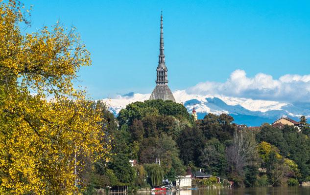 """""""Dall'albero al bosco, norme di tutela"""". Seminario di formazione sulla tutela degli alberi, il 20 settembre a Torino"""