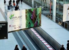 ASSOFLORO: pieno sostegno a Myplant&Garden per lo spostamento della manifestazione e appello ad istituzioni, enti, associazioni e aziende della filiera