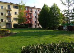 10 domande sul verde condominiale. Il vademecum Anaci-Assofloro. Webinar Sabato 4 luglio