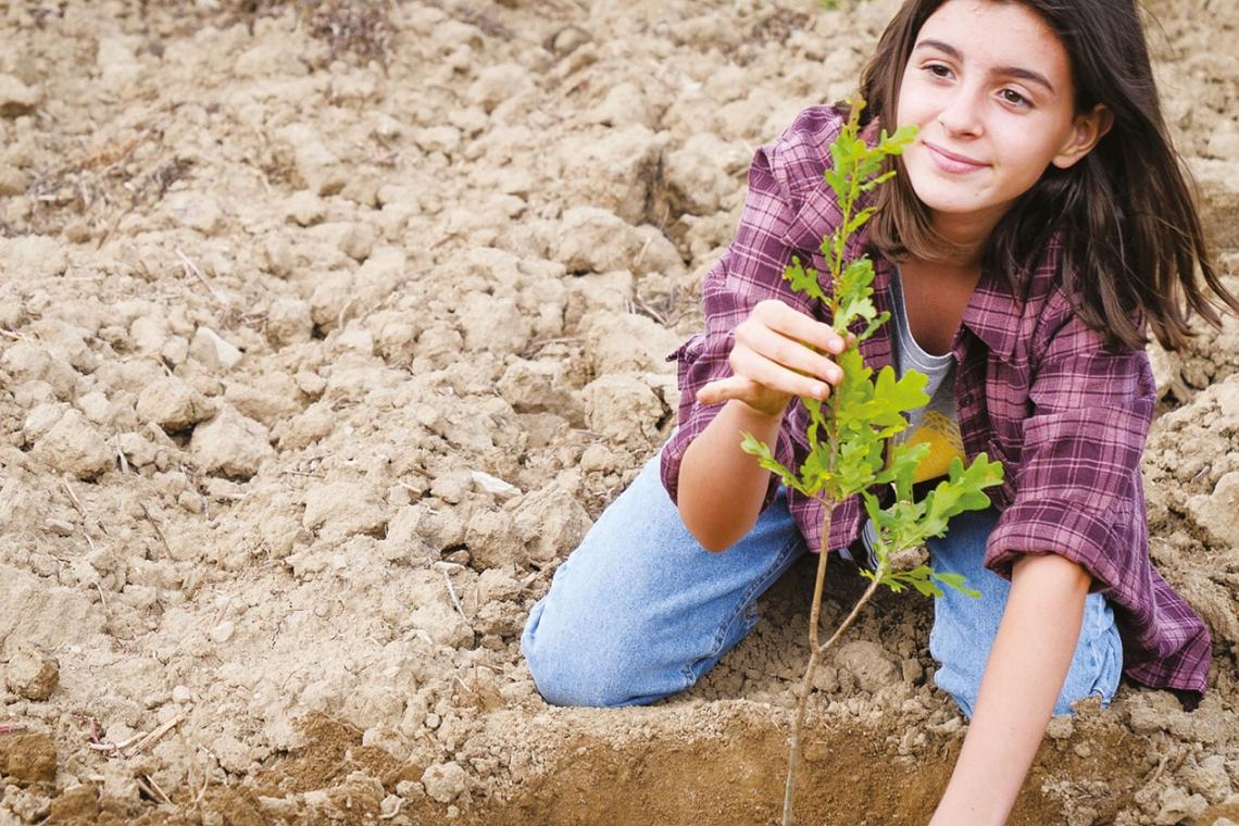 L'orizzonte verde dell'Emilia-Romagna. 4 milioni e mezzo di nuovi alberi. Evento in diretta Facebook