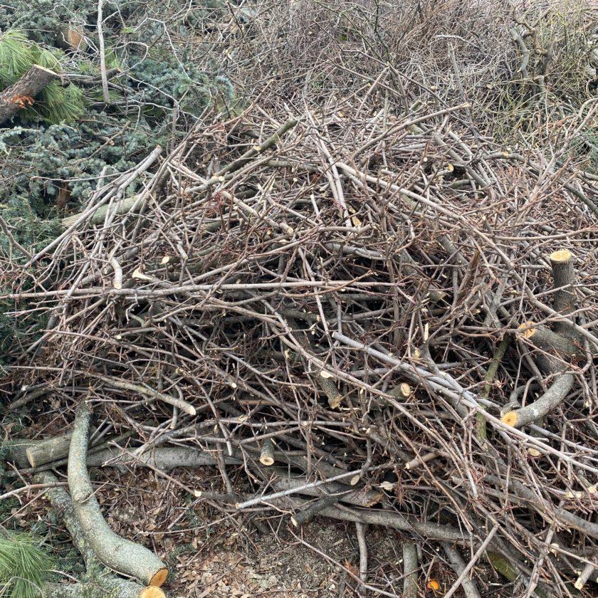 Materiali di approfondimento webinar gestione dei residui vegetali derivanti dalla manutenzione del verde urbano, pubblico e privato